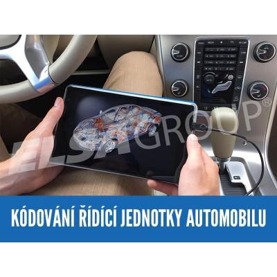 Služba - Kódování řídící jednotky automobilu on-line 123